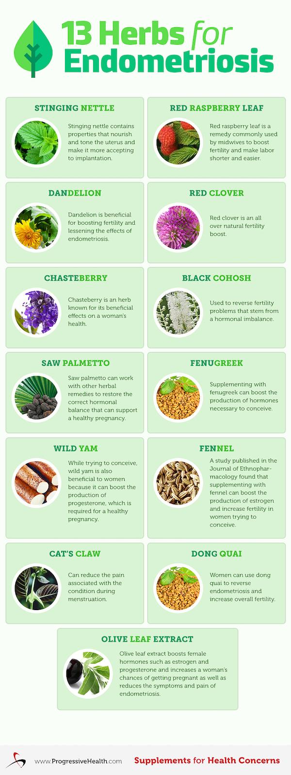 13 Herbs for Endometriosis