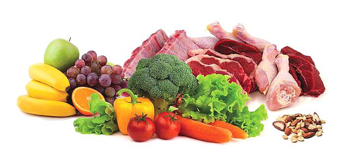 paleo diet Paleo Tuna Casserole Recipe
